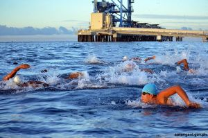Sarbay stages Asia's longest swim