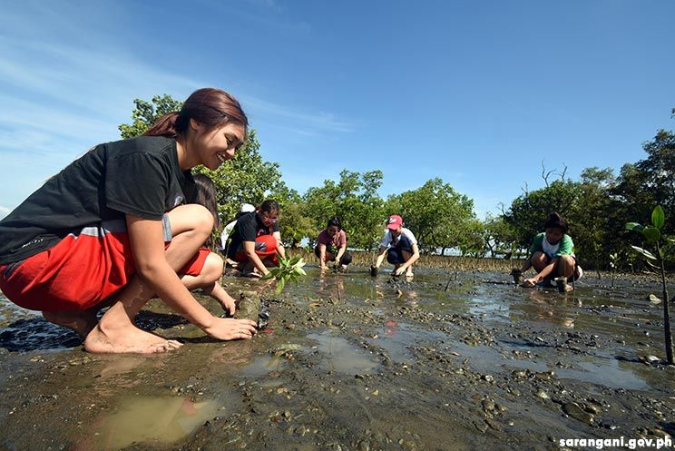 Mangrove planting on environment month