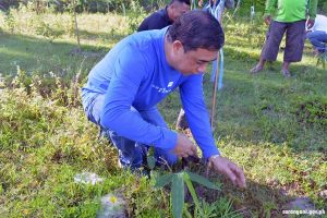 Vice Gov. De Peralta leads bamboo planting