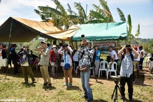 Bird-watching attracts foreigners