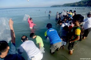 Fingerlings released to Sarangani Bay