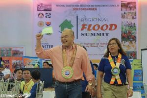 DRRMOs, line agencies hold flood summit